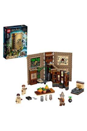 LEGO Herbology Class 76384