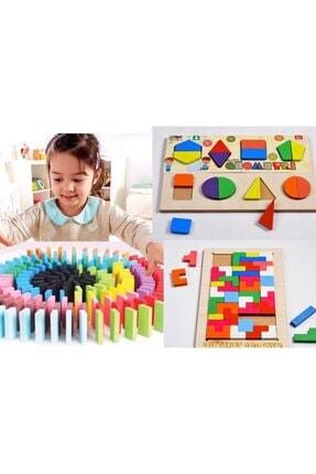 PapulinToys %100 Ahşap Üçlü Eğitici Oyuncak Seti Tetris-geometri-100 Parça Domino