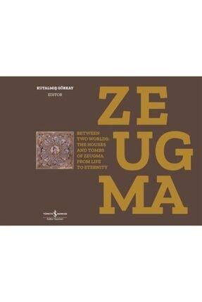İş Bankası Kültür Yayınları Zeugma & Between Two Worlds: The Houses And Tombs Of Zeugma From Life To Eternity