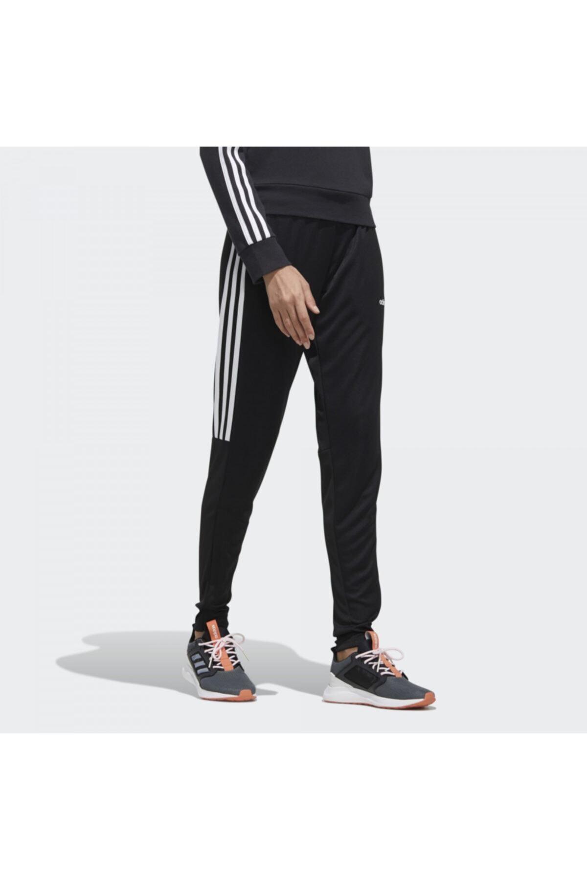 adidas W SERE19 TRG PT */ Siyah Kadın Eşofman 100547697 2