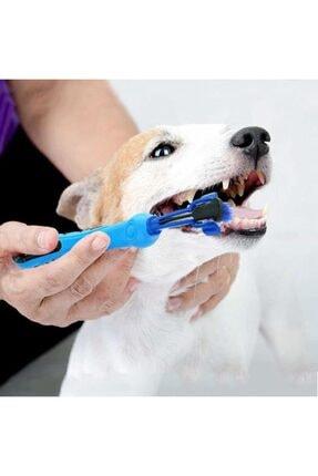 epazzar 3 Taraflı Yumuşak Kedi Köpek Diş Fırçası