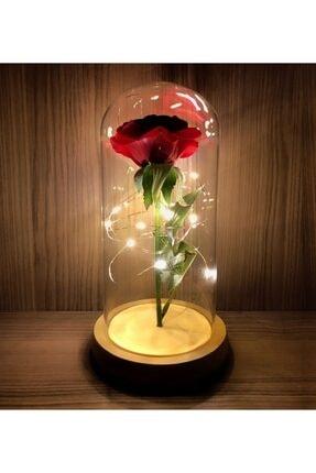 Gift Moda Işıklı Cam Fanus Solmayan Gül