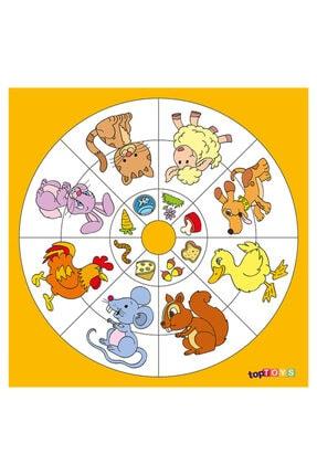Adalinhome Dairesel Temalar Hangisi Ne Yer Ahşap Puzzle 35x35 Cm