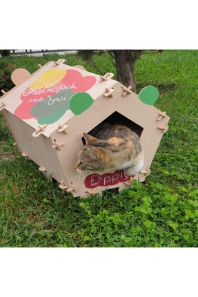 KEDİ KOPEK MOBİLYASİ Kutu Oyun Ssp Ürünü Kedi Evi Projesi -çocuk Oyun