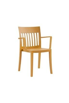 Papatya Eden-k Plastık Sandalye Bahçe Mutfak Restoran Kafe Koyu Sarı