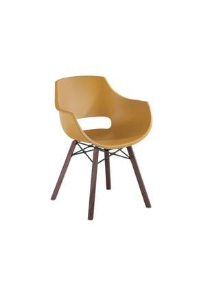 Papatya Opal-wox Pro Iroko Plastik Koltuk Polikarbonat Gövde Mutfak Bahçe Cafe Otel Ofis Sandalyesi