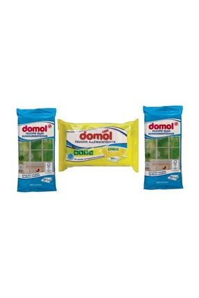DOMOL Antibakteriyel Limonlu Hijyenik Bez & Yüzey Bezi