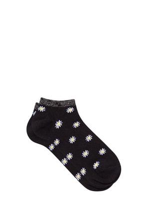 Mavi Kadın Papatya Desenli Siyah Patik Çorap 198247-900