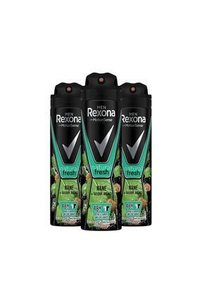 Rexona Erkek Natural Freash Nane Ve Sedir Ağacı Erkek Deodorant Sprey 150 Ml X3