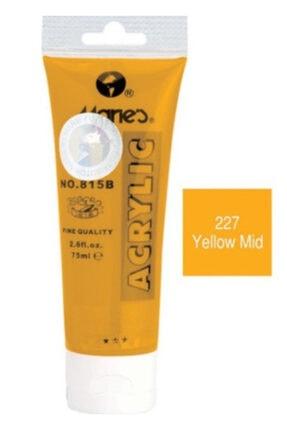 Maries Marie's 227 813b 30 Ml Akrilik Boya Yellow Mid - Orta Sarı