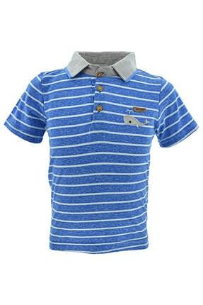 Midimod Erkek Bebek Yakalı Tişört Şort 2li Takım 6-24 Ay M18514