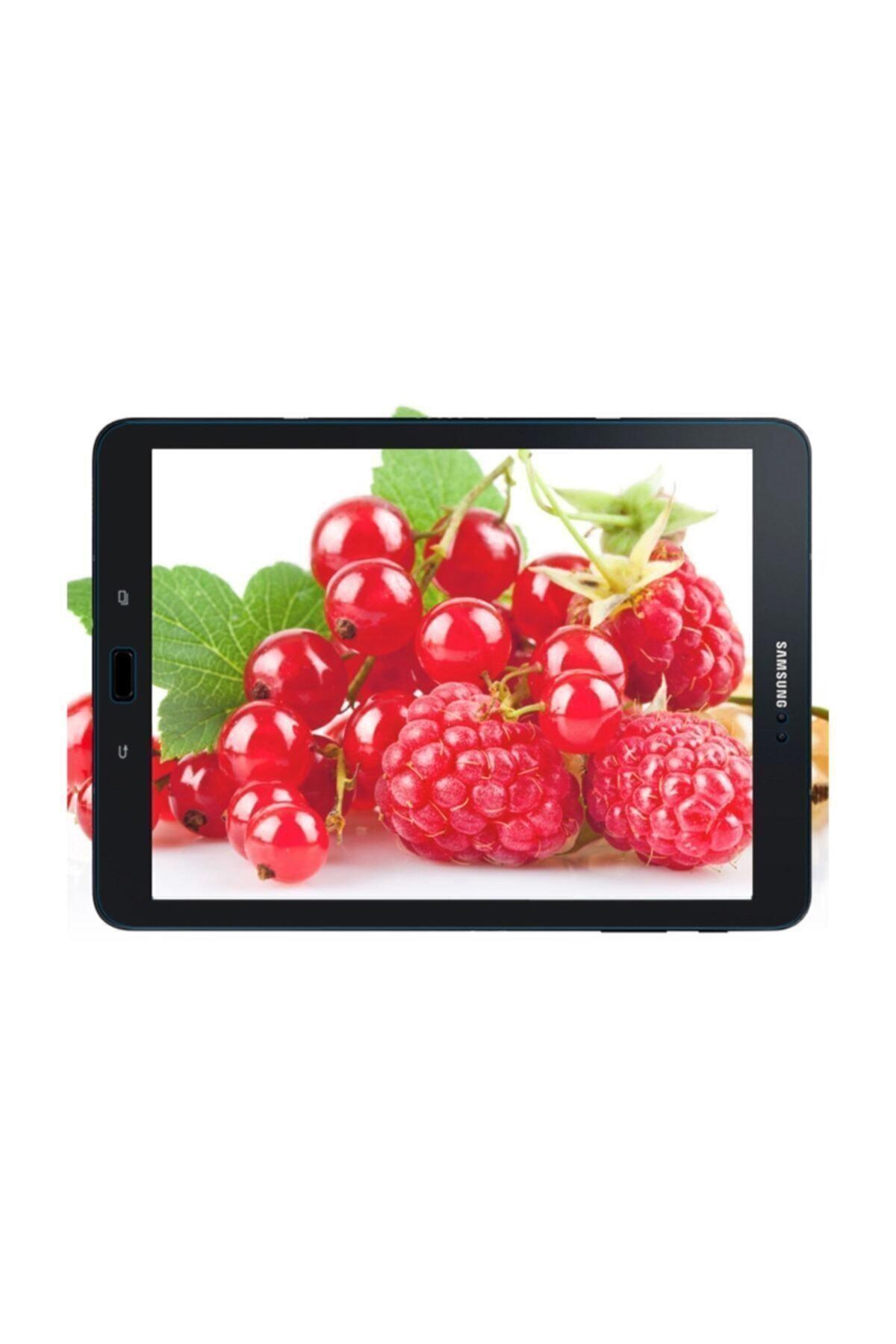 dijimedia Galaxy Tab A 10.1 2019 Uyumlu Sm-t510/t515 Kırılmaz Cam Nano Ekran Koruyucu 2
