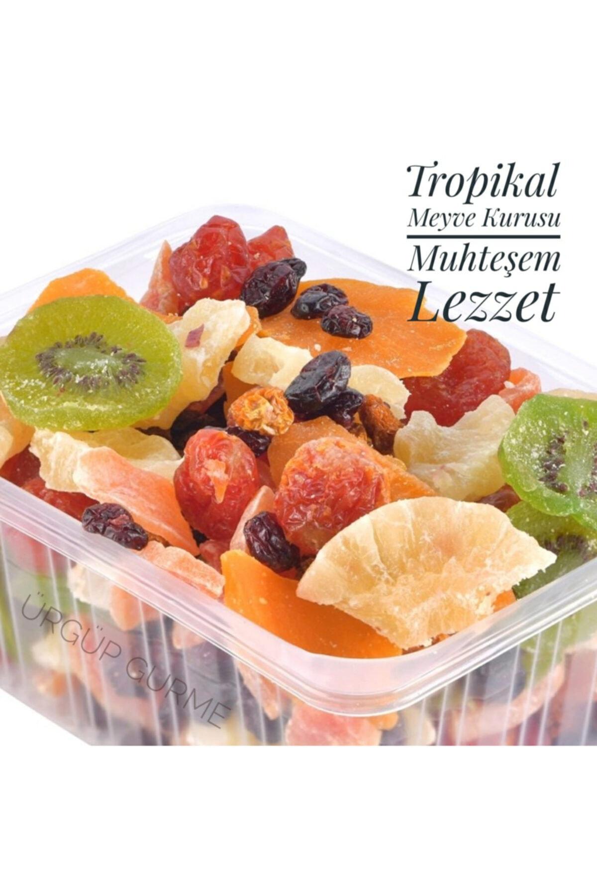 ÜRGÜP GURME Tropikal Meyve Kurusu Karışık 500 Gr 1