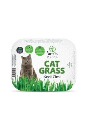 Vet's Plus Tüy Yumaklarına Karşı %100 Doğal Fileli Kedi Çimi