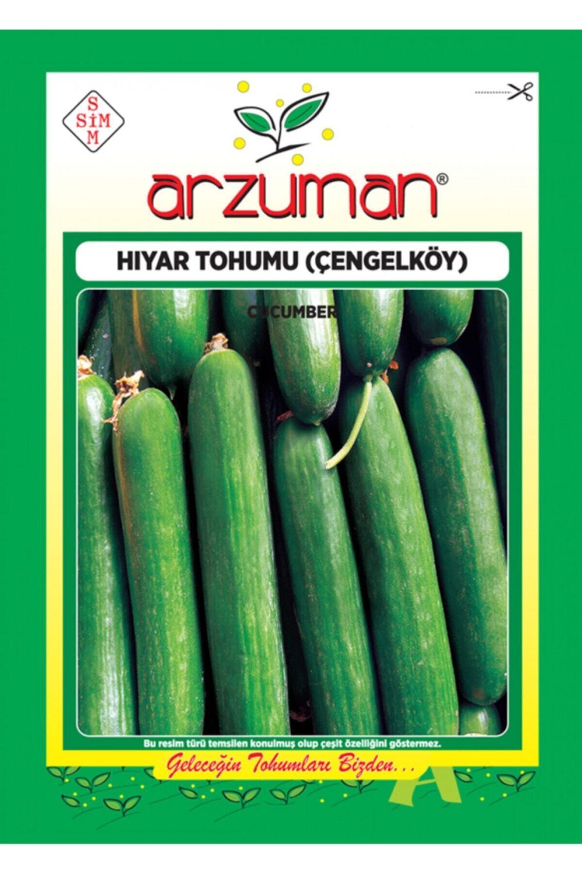 Arzuman Tohum Salatalık Tohumu Çengelköy Tipi 1