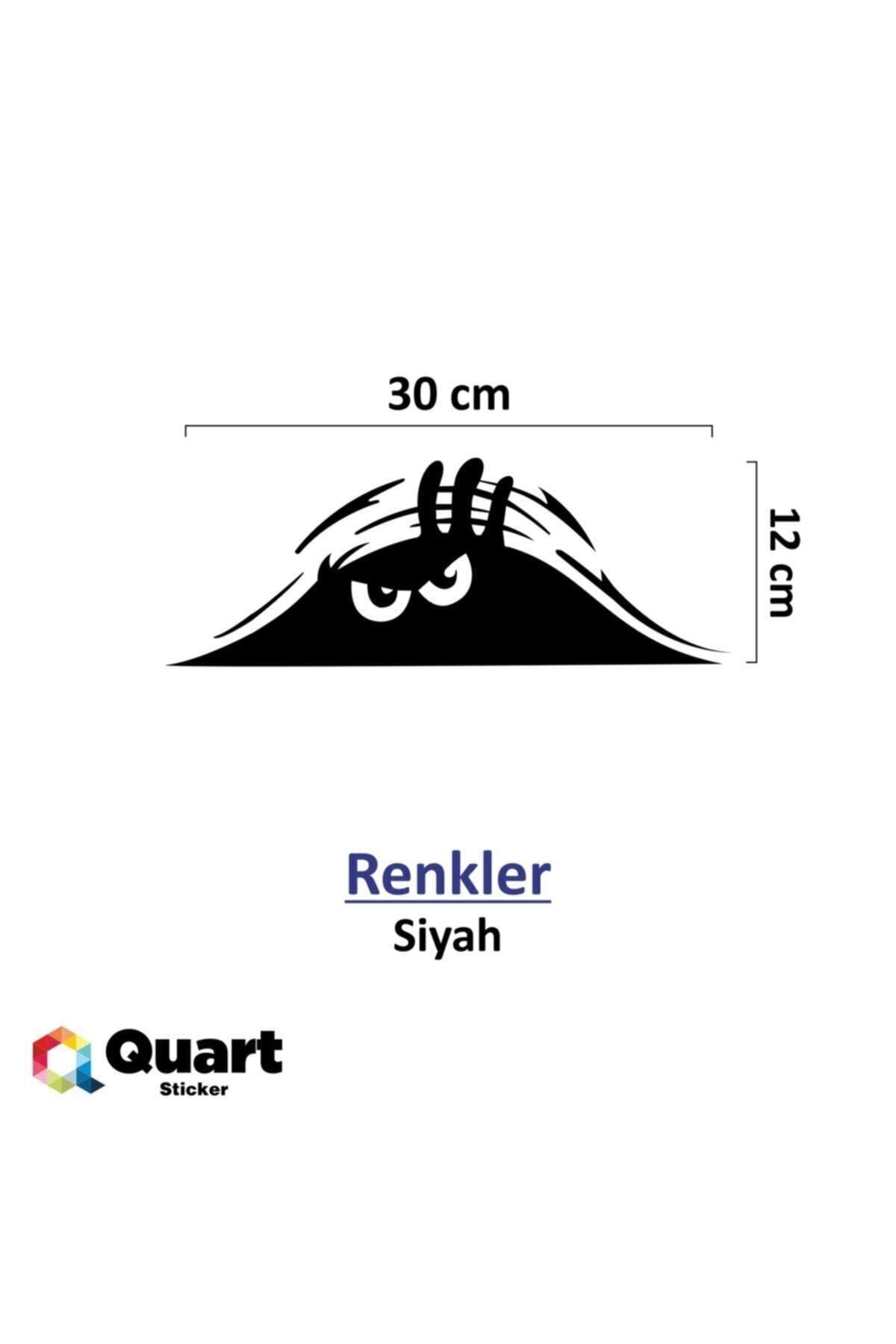 Quart Aksesuar Siyah 30 cm Bagajdan Bakan Adam Oto Sticker Araba Sticker 2