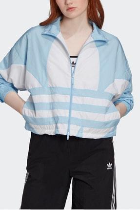 adidas Kadın Beyaz Spor Ceket Lrg Logo Tt