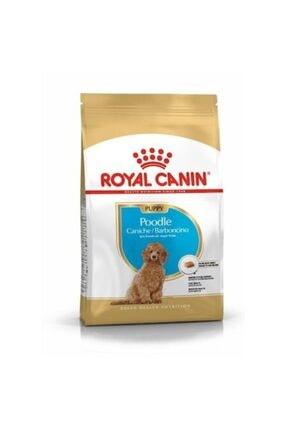 Royal Canin Poodle Puppy Köpek Maması 3 Kg