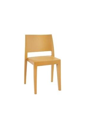 Papatya Gyza Plastik Sandalye Polikarbonat Gövde Mutfak Bahçe Cafe Otel Ofis Sandalyesi