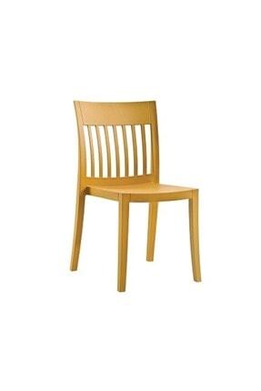 Papatya Eden-s Plastık Sandalye Bahçe Mutfak Restoran Kafe Koyu Sarı