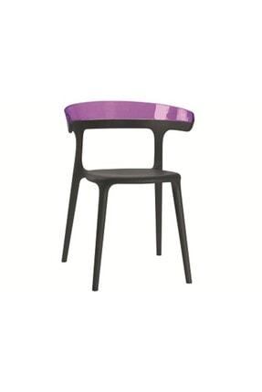 Papatya Luna Plastik Sandalye Polikarbonat Sırt Gaz Enjeksiyonlu Cam Elyaflı Pp Gövde