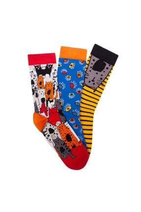 Biggdesign Kadın Soket Çorap Seti