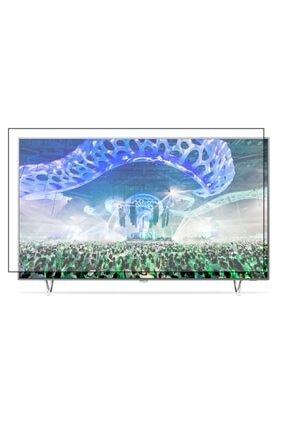 PRO KORUYAN Philips 165 Ekran Curved [65 Inch] Televizyon Ekran Koruyucu
