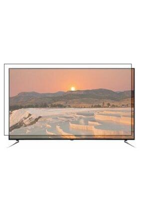PRO KORUYAN Vestel 165 Ekran Oled [65 Inch] Televizyon Ekran Koruyucu