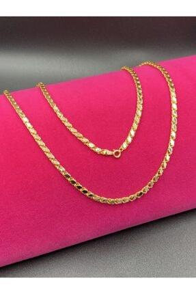 Altınkesesi Kadın Altın Pullu Zincir Kolye 50 cm