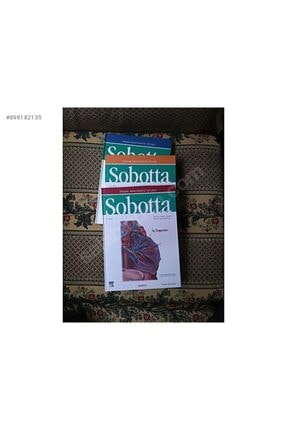İPEKYOLU F. Paulsen - Sobotta Insan Anatomisi Atlası (3 Cilt)