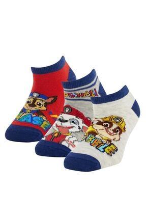 DeFacto Erkek Çocuk Paw Patrol Lisanslı 3'patik Çorap