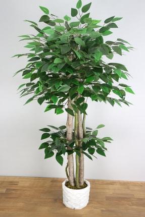 Yapay Çiçek Deposu Yapay Benjamin Ağacı 105 Cm Beton Saksılı