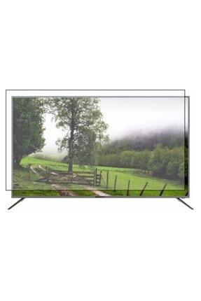 PRO KORUYAN Sunny 65 Inch [165 Ekran] Televizyon Ekran Koruyucu