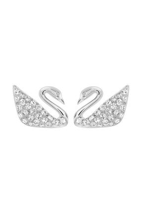 Swarovski Kadın Pierced Eaarings Swan 1116357