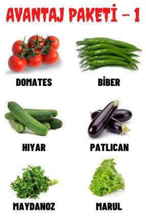 Tohum Seç Avantaj Paketi-1 Domates, Biber, Hıyar, Patlıcan, Maydanoz, Marul Tohumları, Toplam +300 Adet Tohum