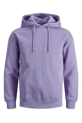 Jack & Jones Erkek Copenhagen Sweatshirt Loopback Relaxed Fıt Hoodıe - 12176864