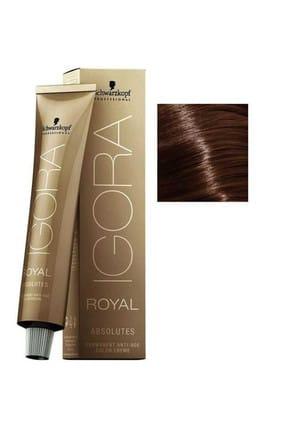 Igora Saç Boyası -Royal Absolutes 6-60 Koyu Kumral Çikolata Doğal 4045787163254