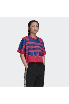 adidas Adicolor Large Logo Kadın Kırmızı Tişört (gd2269)