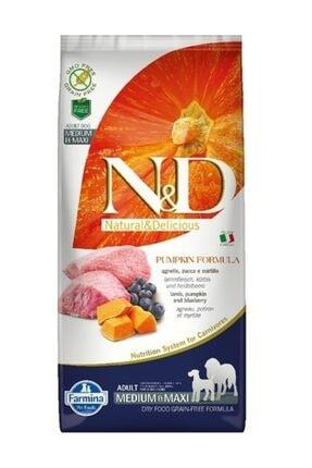 N&D Medium ve Maxi Kuzu Etli Yaban Mersinli ve Balkabaklı Tahılsız Yetişkin Köpek Maması 12 kg