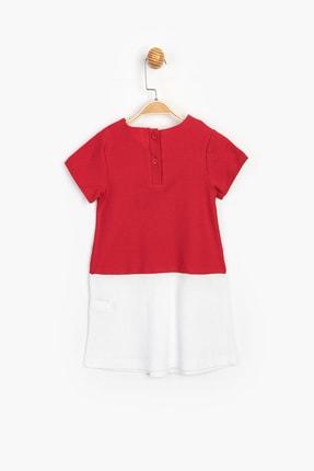 Disney Baby Kız Çocuk Kırmızı Minnie Mouse Lisanslı Elbise