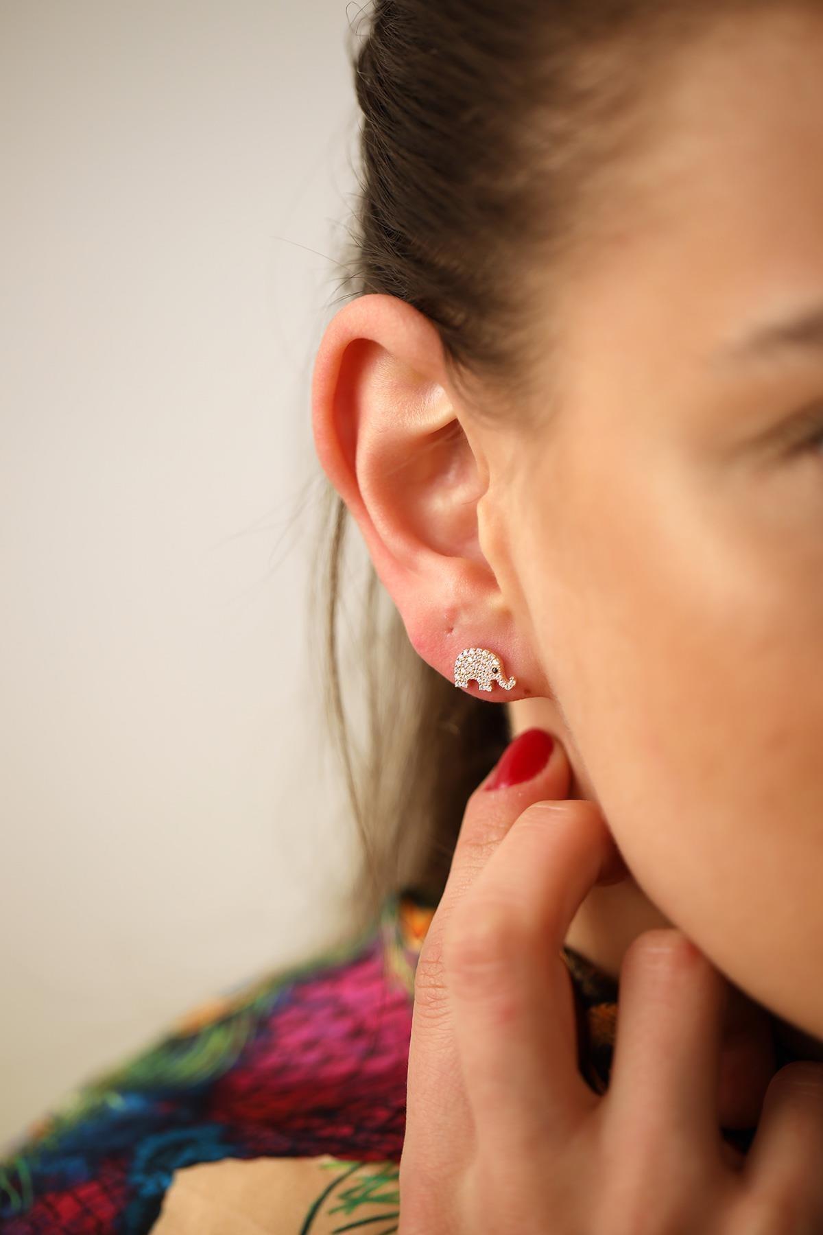 İzla Design Kadın Fil Model Zirkon Taşlı Rose Gümüş Küpe İZLASLVR00144 2