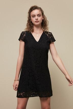 Mudo Kadın Siyah Dantelli Mini Elbise
