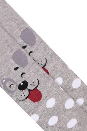 Bross Köpek Desenli Çocuk Külotlu Çorap
