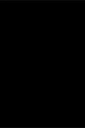 Flamingo Black Siyah Desen Duvar Kağıdı (5 M²) 17961