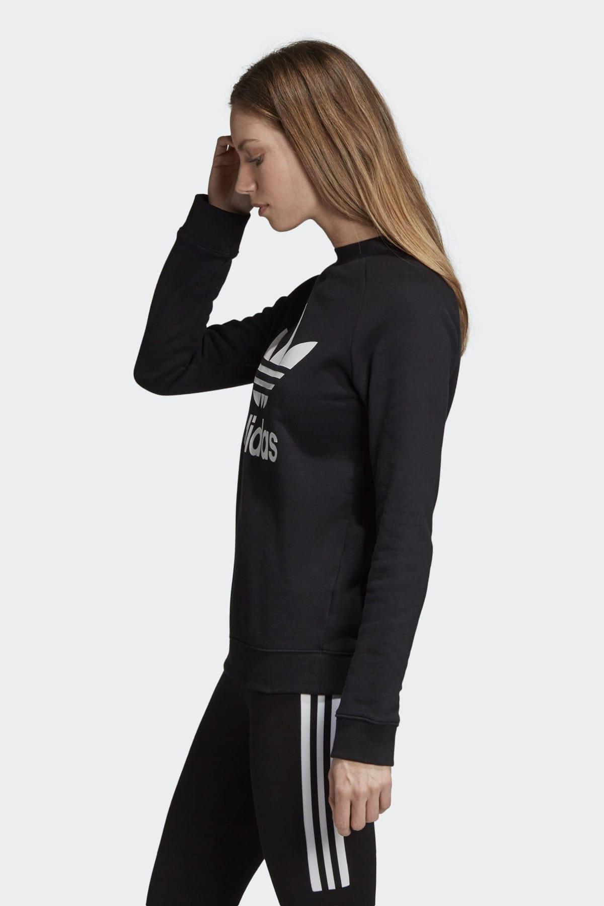 adidas Kadın Originals Sweatshirt - Trf Crew Sweat - DV2612 2
