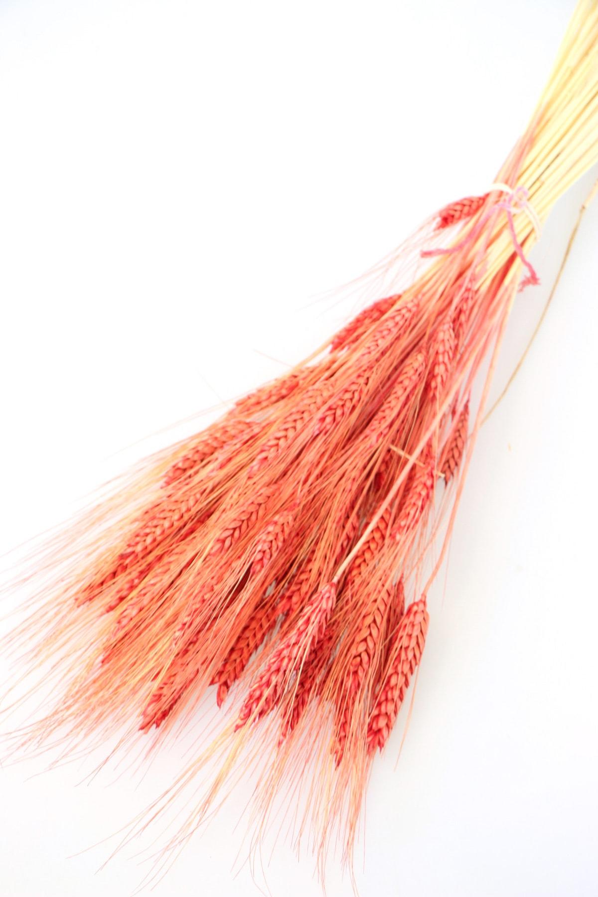 Yapay Çiçek Deposu Kuru Başak Demeti Kiremit Kırmızı 1