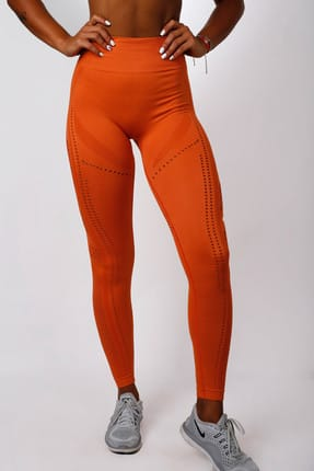 Gymwolves Kadın Dikişsiz Spor Tayt - Orange Power - Seamles Leggings / Aktive Power Serisi