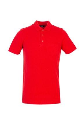Kiğılı Erkek Kırmızı Polo Yaka Regular Fit Tişört