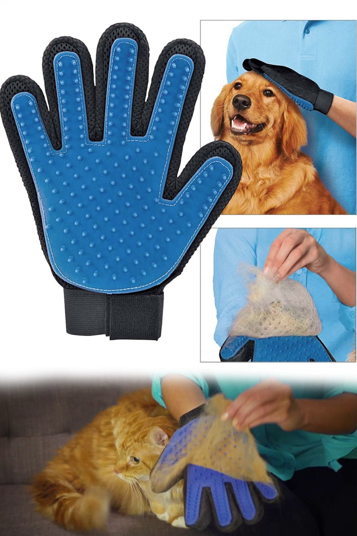 Diğer Kedi Ürünleri