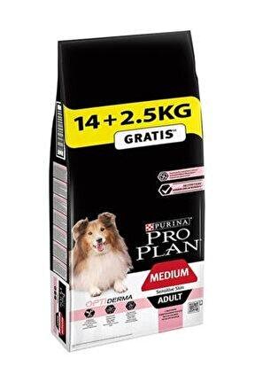 Somon Balıklı Köpek Maması 14 kg + 2,5 kg